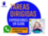 TAREAS DIRIGIDAS en Quito