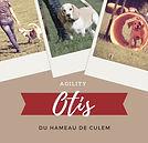 OTYS DU HAMEAU DE CULEM