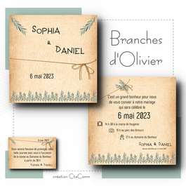 Branches d'Olivier