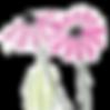 fleurs-roses