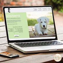 site VÉTÉPINETTE - cabinet vétérinaire