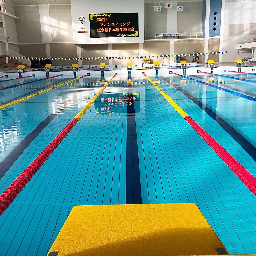 フィンスイミング短水路日本選手権大会