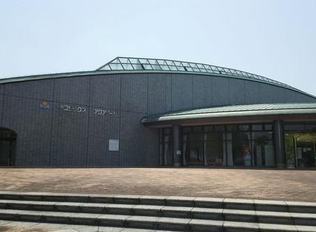 【8/6】フィンデモンストレーションin福岡・宗像