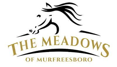 meadows logo.png