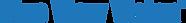 blueviwevision-logo.png