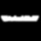 Logo Blanc aviaskills