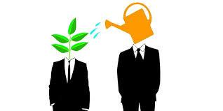 Selecting a Mentor
