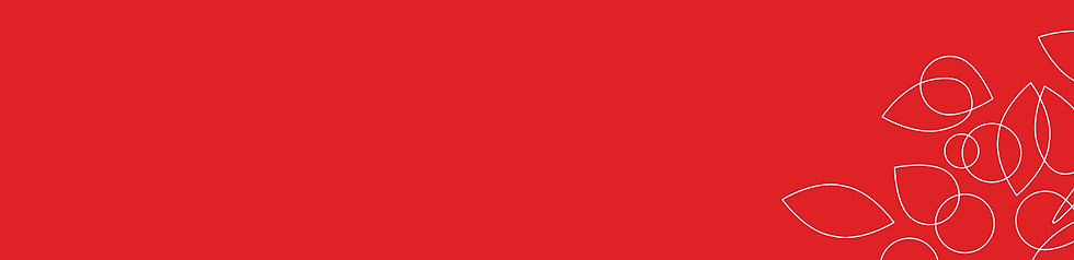 CI Farbe rot weiss.PNG