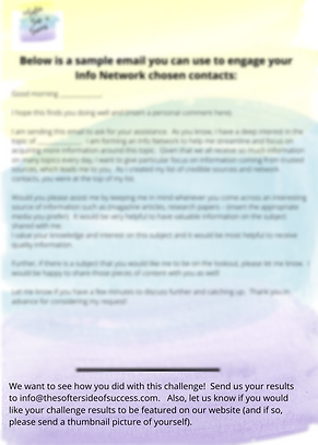 Info Network 3 blurred.png