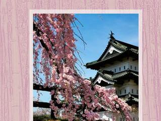 "NEW BOOK!  ""SAKURA, SAKURA - My time in Japan"""
