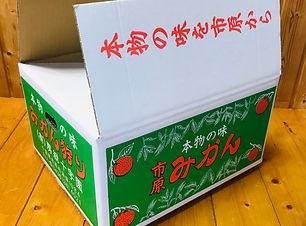 shipping_large_1.jpg