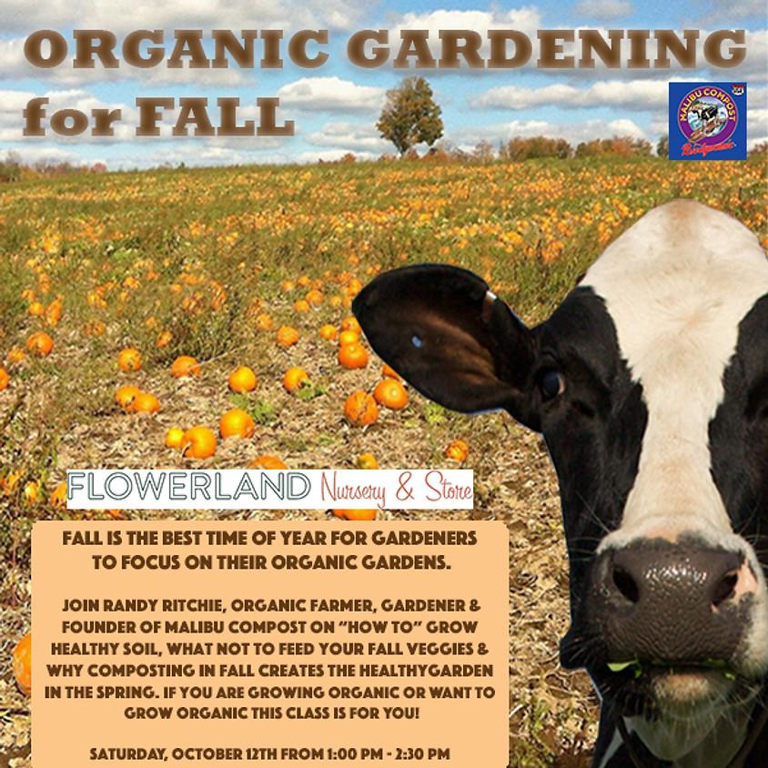 Organic Gardening for Fall
