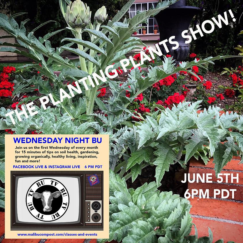Wednesday Night BU - The Planting Plants Show!