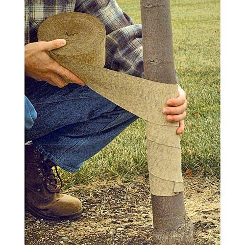 A.M. Leonard Crinkled Paper Tree Wrap