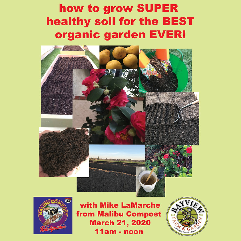 How to grow SUPER healthy soil for the BEST organic garden EVER!