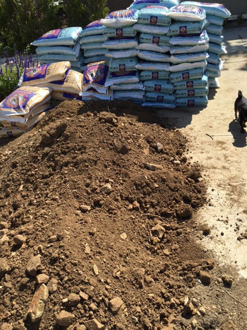 Soil ready to fill beds.JPG