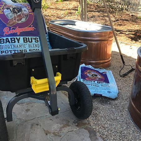 Baby Bu's Potting Soil Home Page.jpg