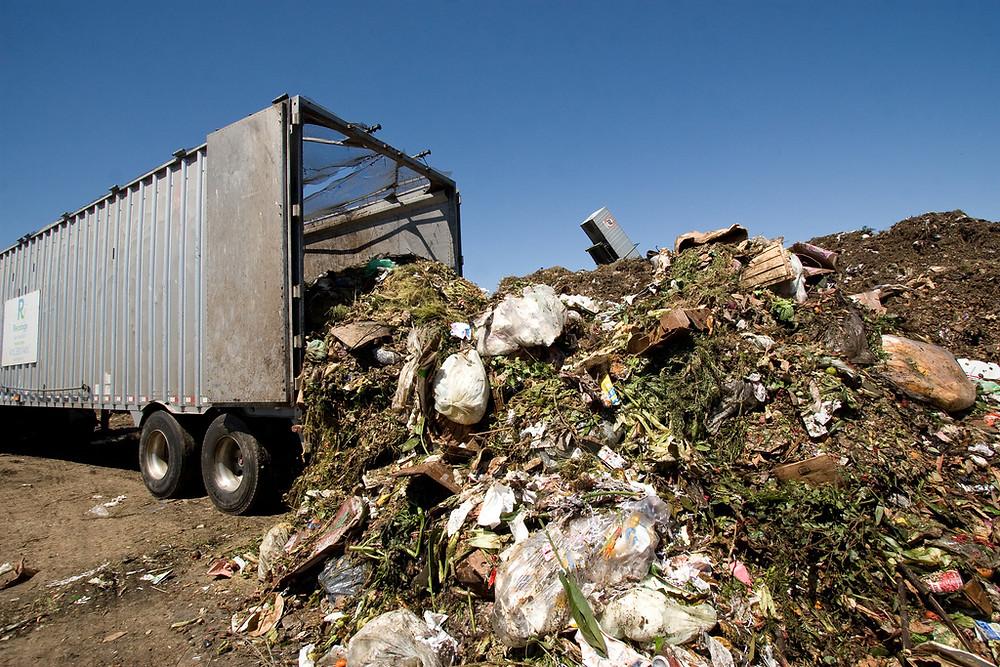 Green waste city dump