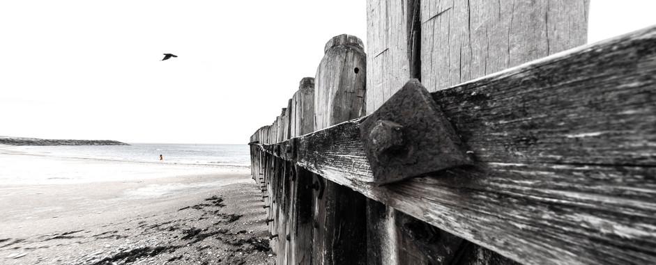 IoW Beach BW.jpg