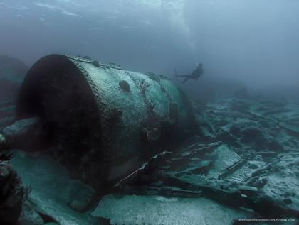 dive-bermuda-pollock-sheilds-boiler-dive