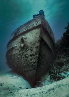 dive-bermuda-hermes-1.jpg