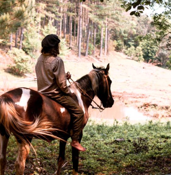Trilha sensorial a cavalo Natureza Awen
