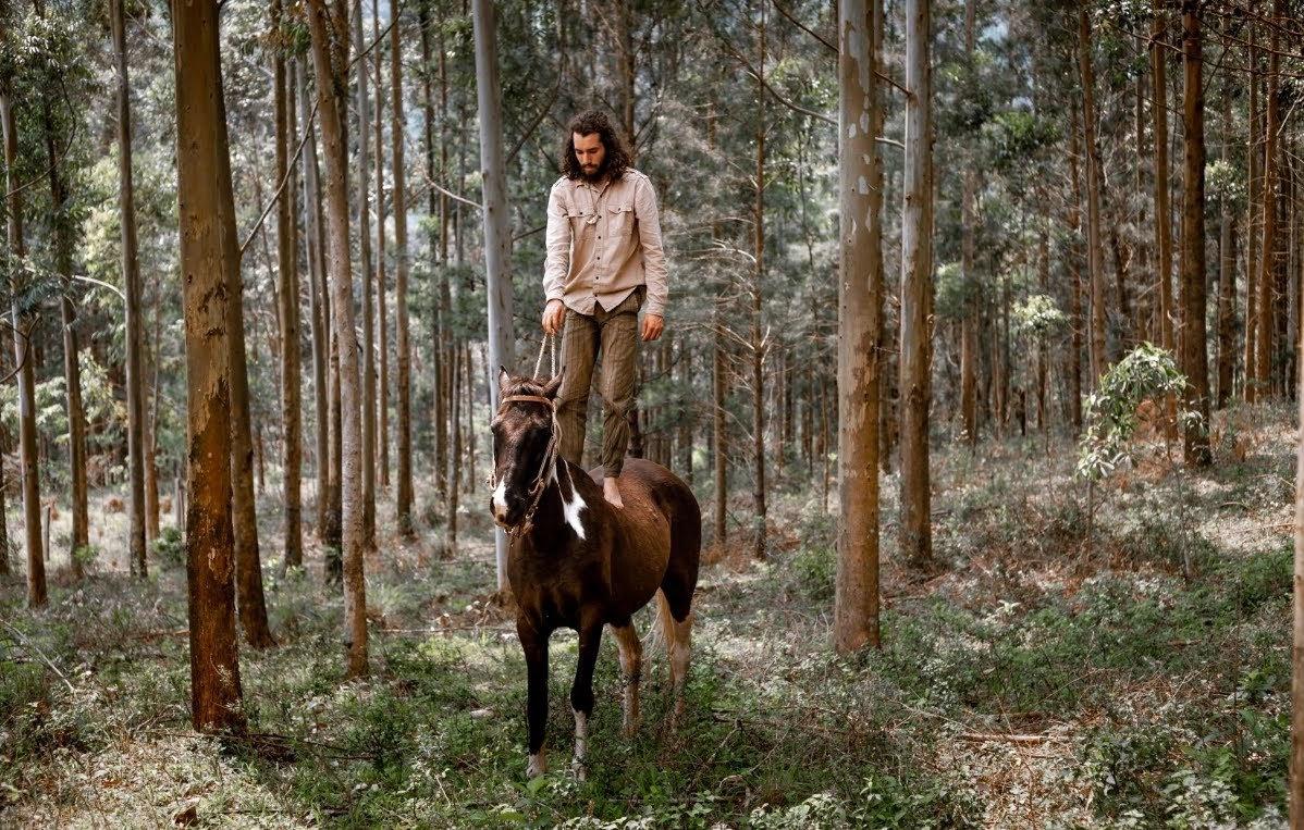 Especial Trilha a cavalo Natureza Awen