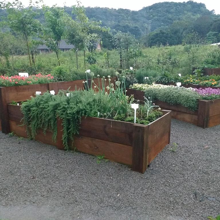 Jardim comestível e Horta em casa (1)