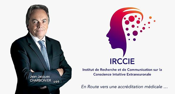 irrcie 3.png