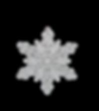 WinterLargesmall.png