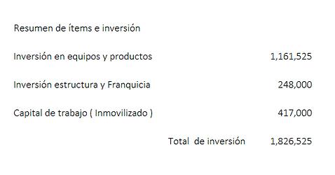 RESUMEN DE INVERSION.PNG
