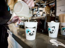 Five Dog-Friendly Cafés in Toronto