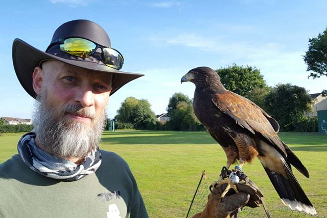 Meet Hank! Hank is a #harrishawk & what a #gorgeous #birdofprey he is! Big thanks to #townandcountry