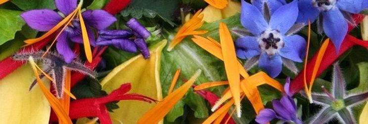 Jedlé květy
