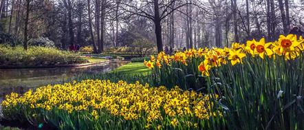 Zahrada Keukenhof