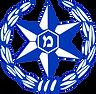 משטרה.png