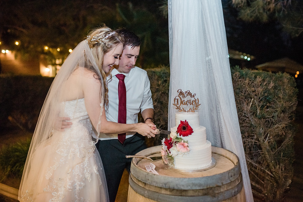 bride and groom cutting into wedding cake