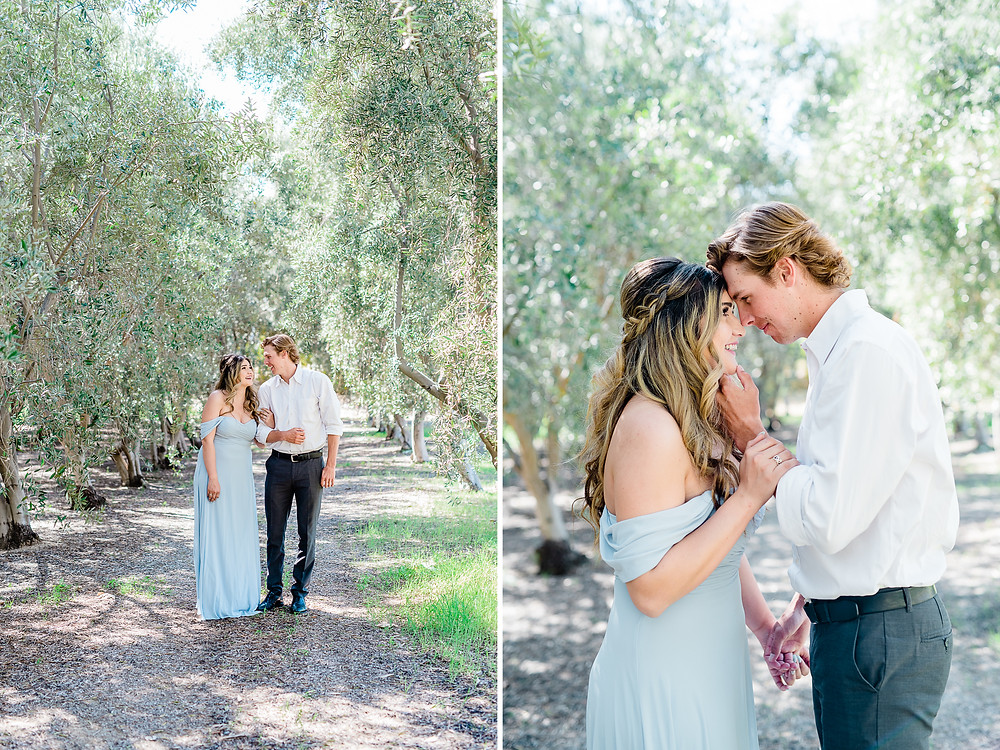 midday engagement photos in Olive trees with blue dress holding chin