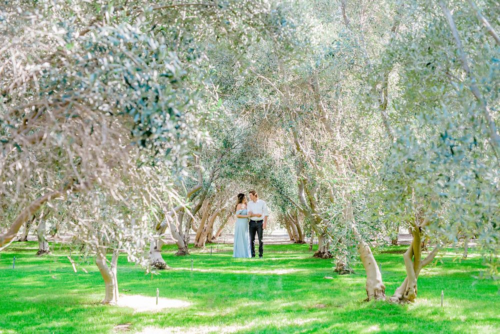 Temecula olive oil company engagement photos
