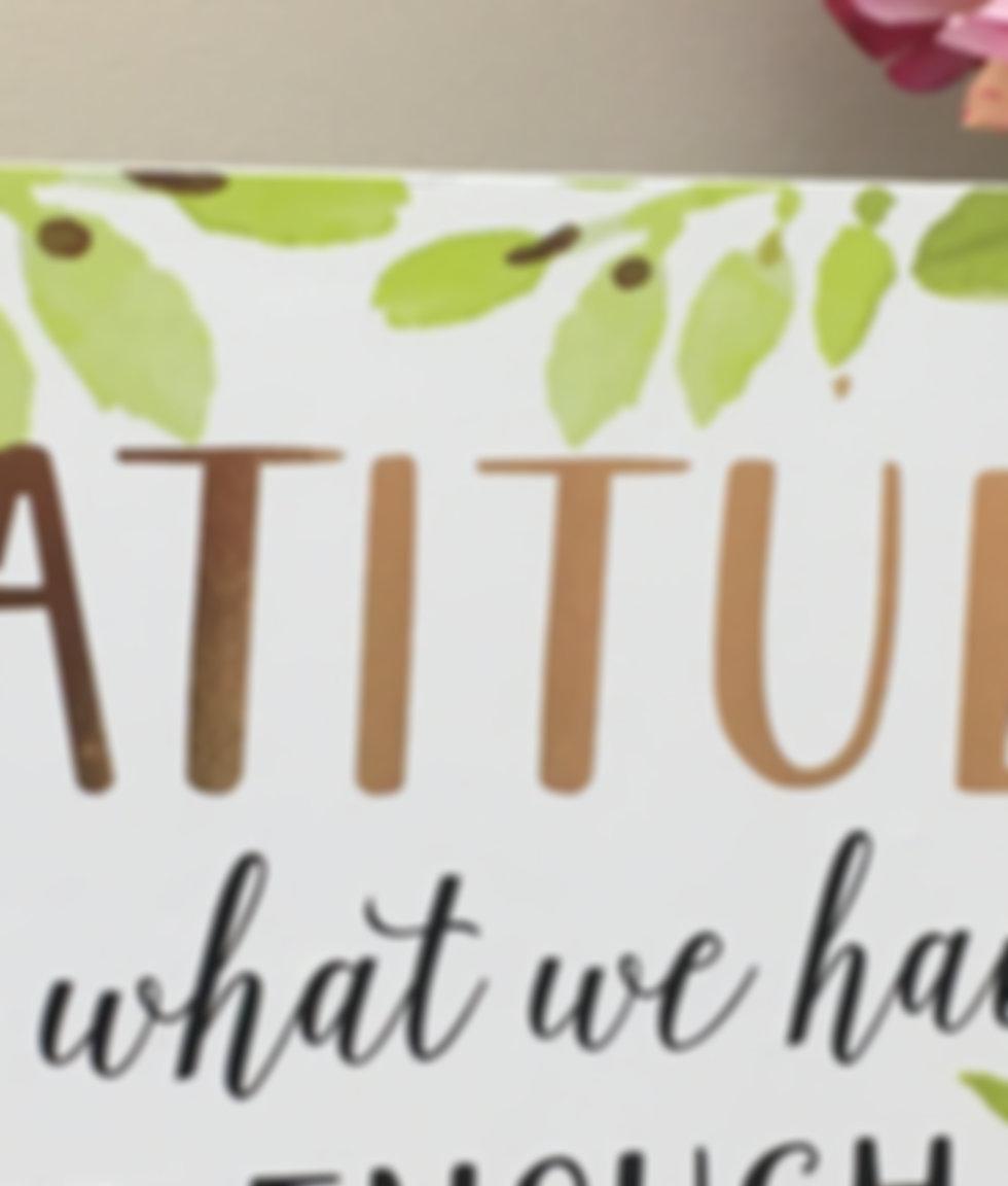 Gratitude plus pink peony