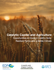 Catalytic Capital and Agriculture