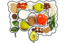 Gut Health Food Heroes