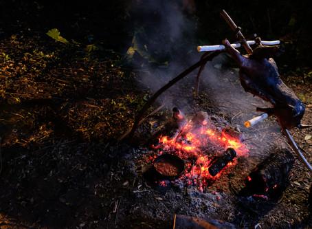 野餐・用舌尖與自然對話