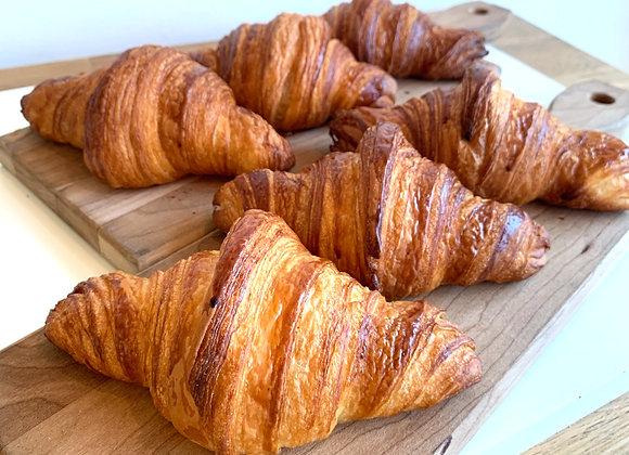 6 Plain Croissants (Tue/Wed/Thu)