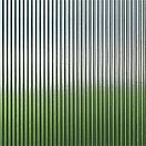 Narrow Reed Glass