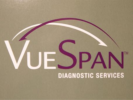 VueSpan Logo