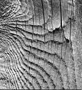 wood grain img.jpg