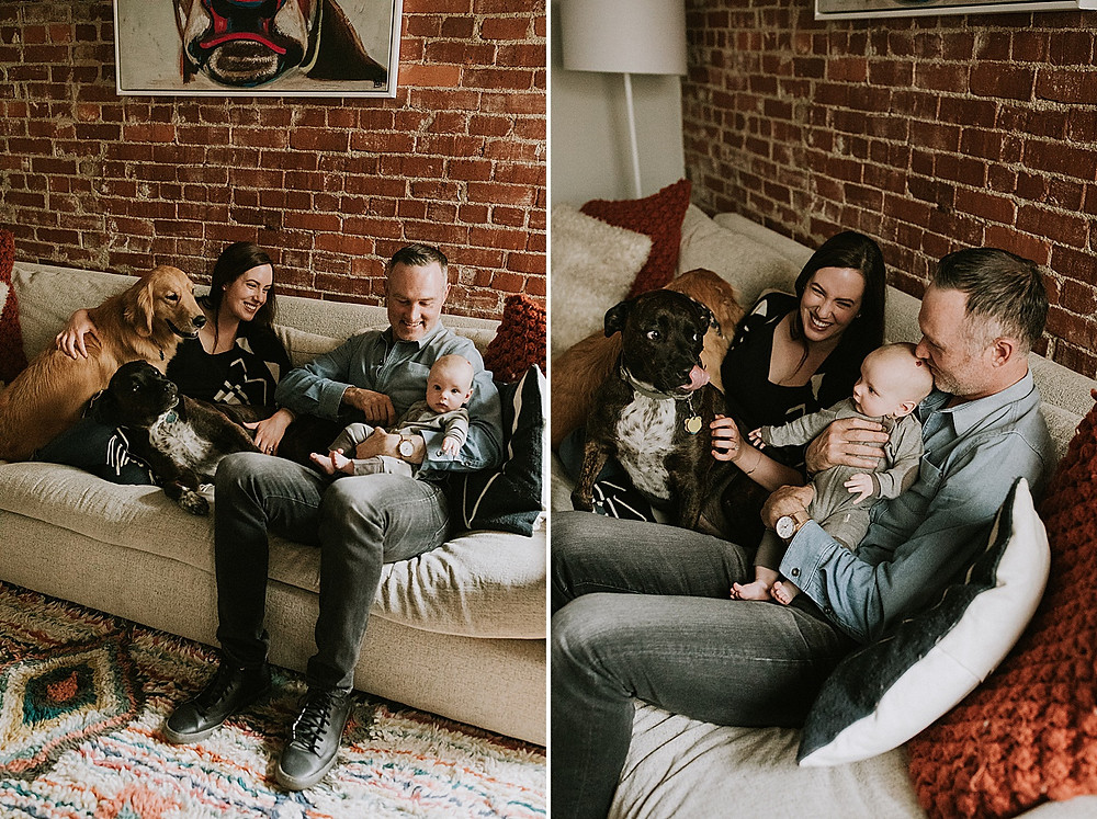 Family sitting on their couch with dogs in Pittsburgh