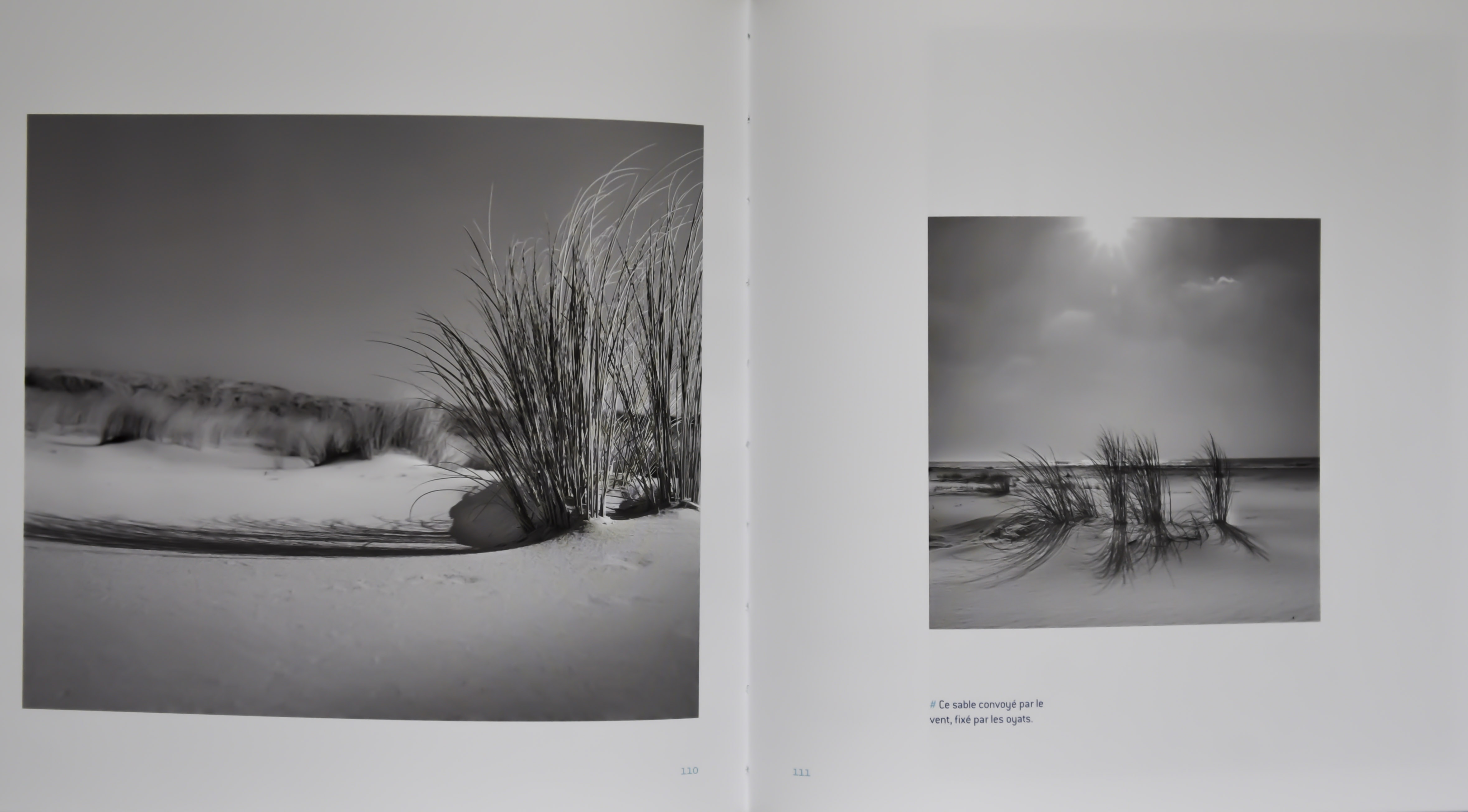 K Medina Photographe -0673