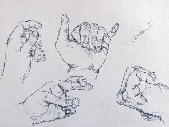 Handstudien (2014)